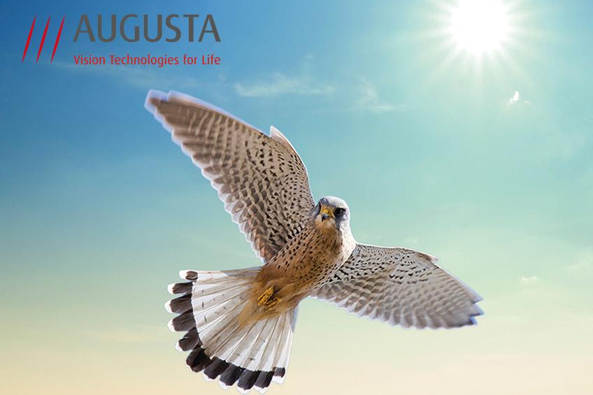 Augusta Technology AG Geschäftsbericht Contigo Werbeagentur Investor Relations IR